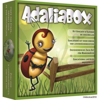 3-6-ans-adavalue-adalia-box